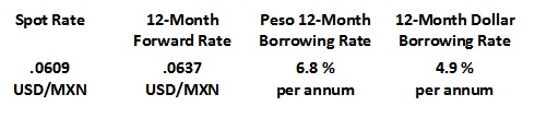Table 2. Foreign Exchange & Interest Rates - Mexican Firm